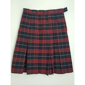 Stitch Down Pleat Skirt- Style 11-Plaid 77