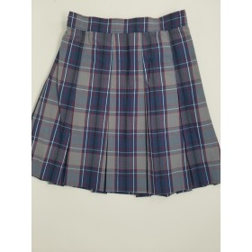 Stitch Down Pleat Skirt- Style 11-Plaid 20
