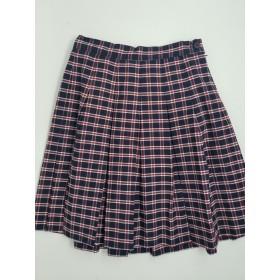Stitch Down Pleat Skirt- Style 11-Plaid 26