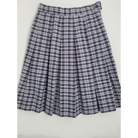 Stitch Down Pleat Skirt- Style 11-Plaid 36