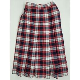 Knife Pleated Skirt- Style 06-Plaid 66