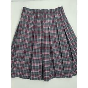 Stitch Down Pleat Skirt- Style 11-Plaid 84