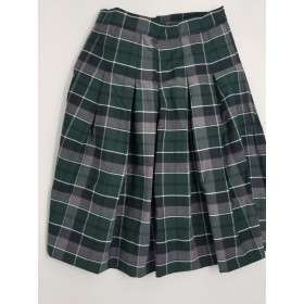 Stitch Down Pleat Skirt- Style 11-Plaid 13