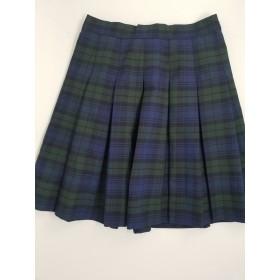 Stitch Down Pleat Skirt- Style 11-Plaid 14