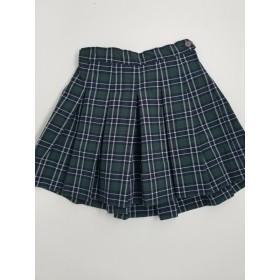 Stitch Down Pleat Skirt- Style 11-Plaid 3